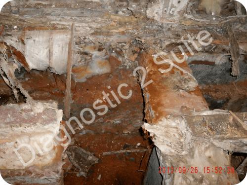 Expertise et recherche de m rules et champignons des maisons - Vide sanitaire humide ...
